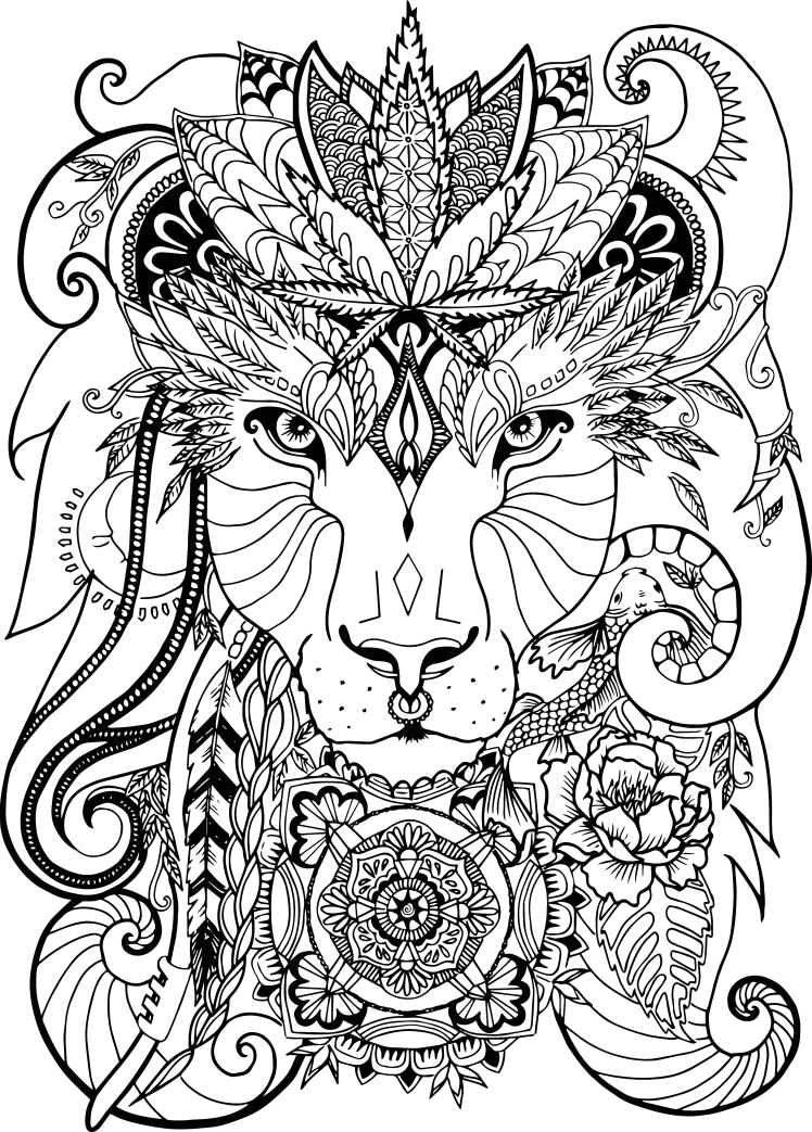 Lion final transparent