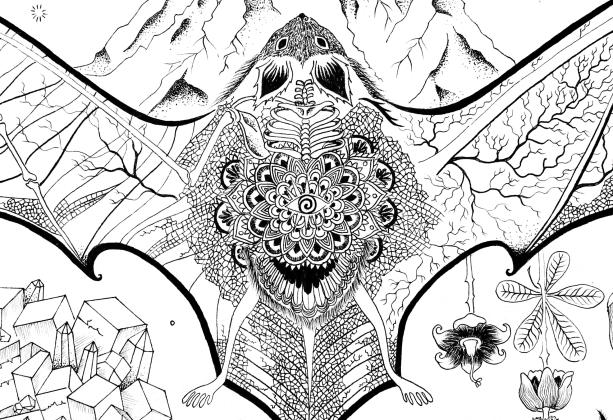 sphinx-tecc82te-de-mort-pyrite-fleur-de-baobab.png